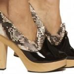 Spring Shoe Sass