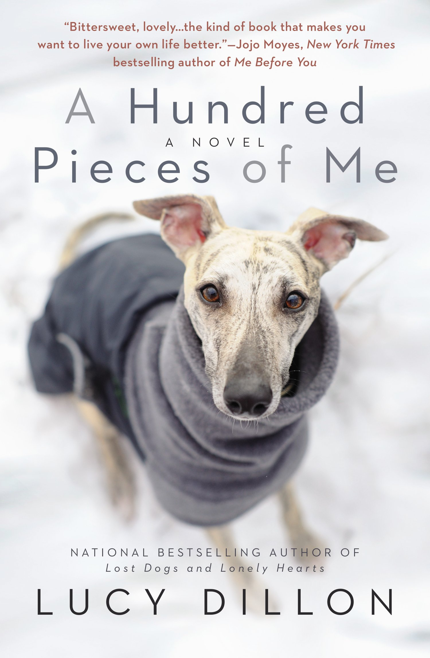 A Hundred Pieces Of Me by Lucy Dillon
