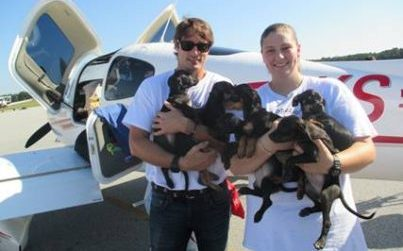 "Clear The Shelters Day: ""Bachelor"" Prince Lorenzo Borghese Flies 330 Animals To Safety"