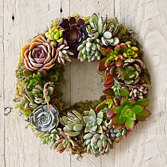 Mixed Succulent Wreath, $109 @williams-sonoma.com
