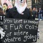 You Look Like A Cruel Villain In That Fur Coat