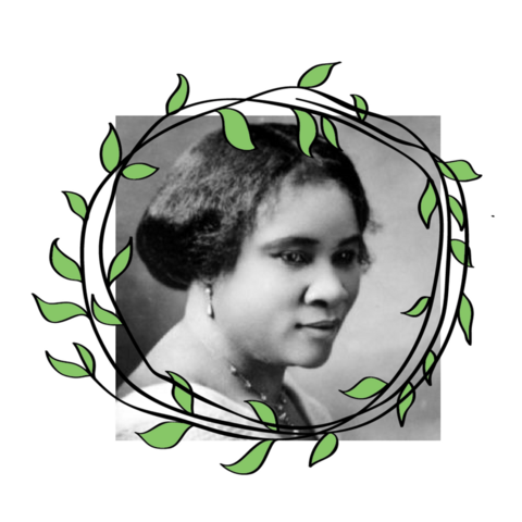 """Madam C.J. Walker (Sarah Breedlove) was born in 1867 in Louisiana. A former employee of Annie Turnbow Malone, Madam C.J. Walker invented her line of black hair care products in 1905, at a time when there weren't any options for black hair on the market. Her business was wildly successful and she became America's 1st self made female millionaire. She also popularized the press and curl style. """"I want the great masses of my people to take a greater pride in their personal appearance and to give their hair proper attention."""" Source."""