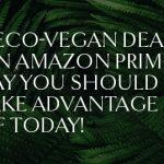 11 Eco-Vegan Deals On Amazon Prime Day You Should Take Advantage Of Today!