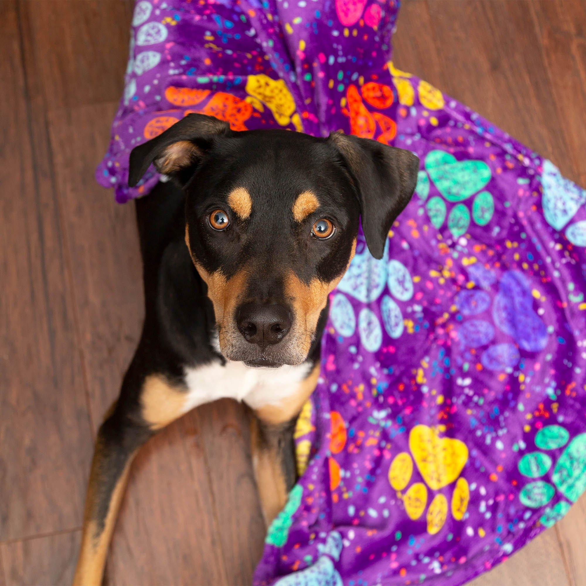 Snuggle Paws Fleece Pet Blanket Snuggle Fleece, $4.95 @theanimalrescuesite.com