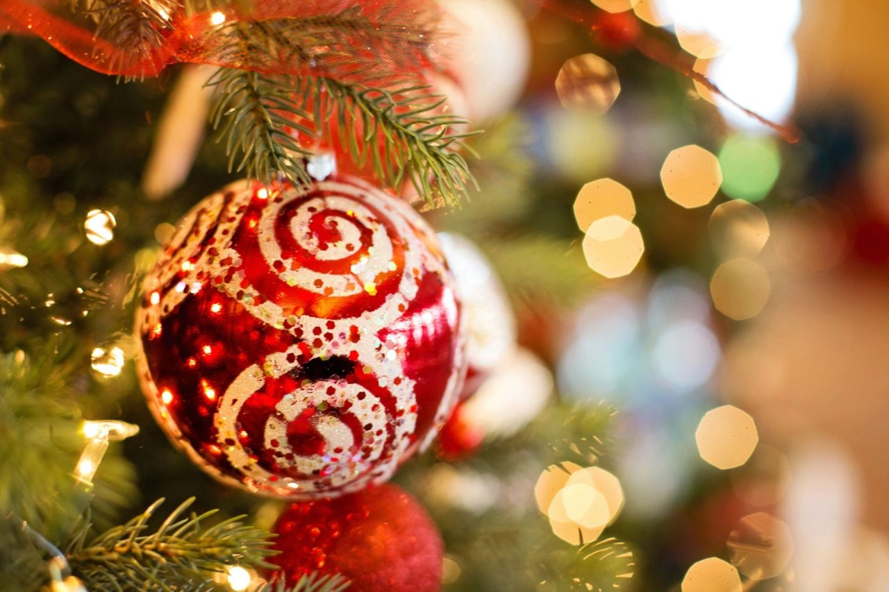 Taxidermy Christmas