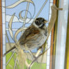 Small Bird Taxidermy Art of A Reed Bunting with embellished glass case