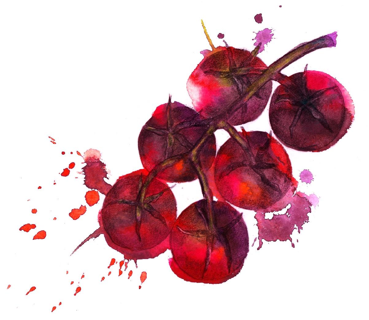 Troisgros Tomato Vinaigrette