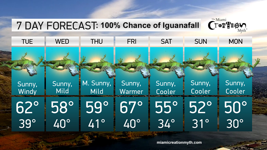 Florida Weather Forecast Calls for a 100% Chance of Iguanafall