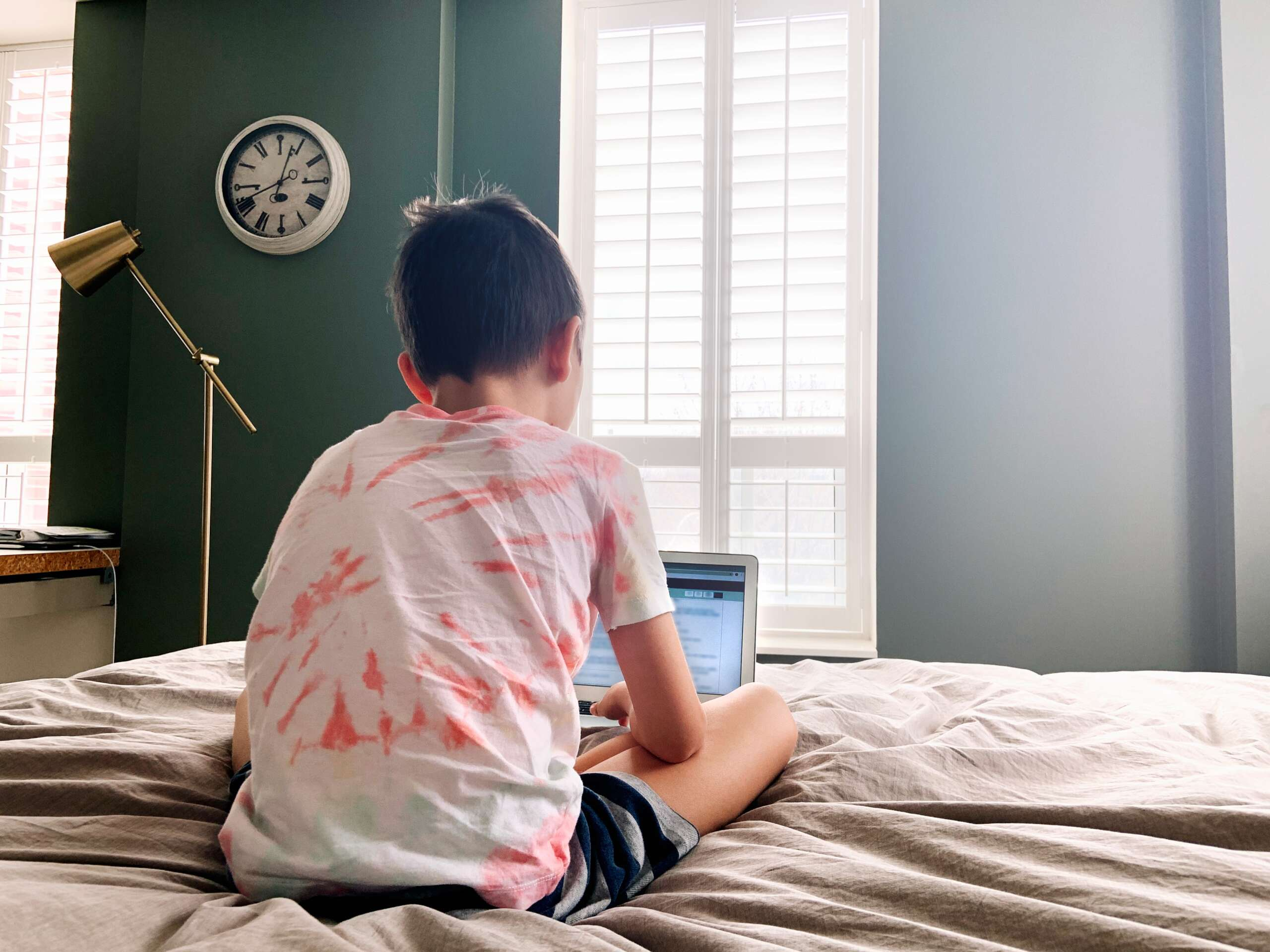 Virtual Learning and Autism