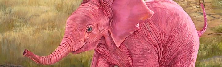 Wildlife Art by: Laura Curtin
