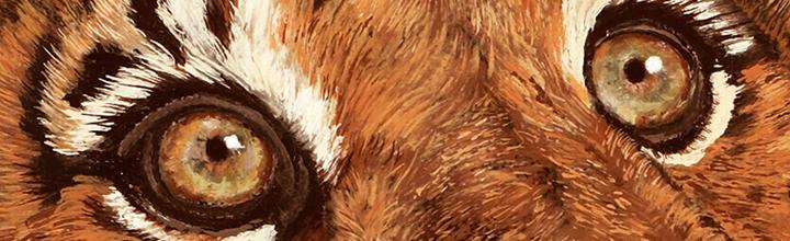 wildlife artist Laura Curtin