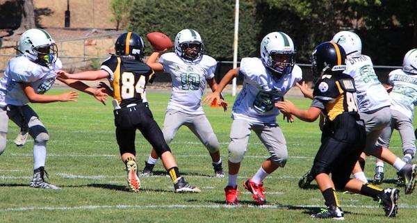 Quarterback Julian Castro of the bantam division Santa Barbara Sharks completes a pass for a short gain in a win over Oxnard.