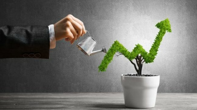 MoneySense Part 8: Investments: Financial Independence by Beating Taxes, Inflation and Avaricious Mutual Fund Companies
