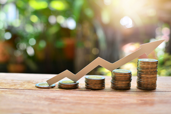 MoneySense Part 7:  Investments: Taking Reasonable Chances to Achieve Wealth