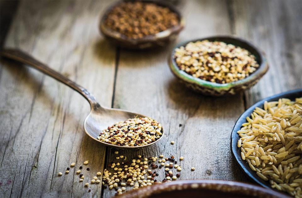 germination graines