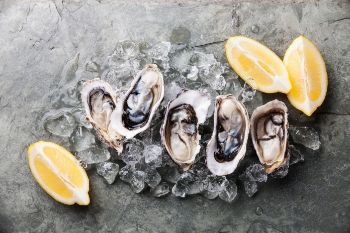 oystermania-une