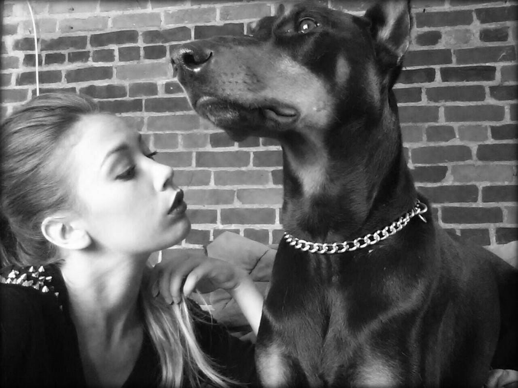 blog-chien-mon-amour