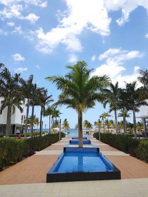 riu-hotels-jamaica-palmiers
