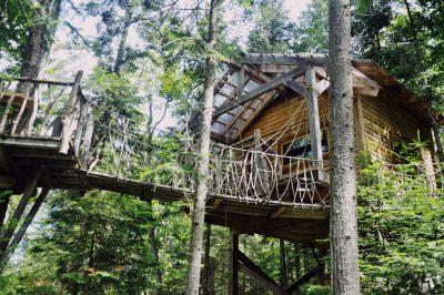 cabane dans les arbres toits du monde chalet perché