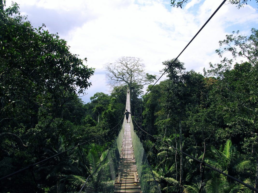 les ponts suspendus à Puerto Maldonado