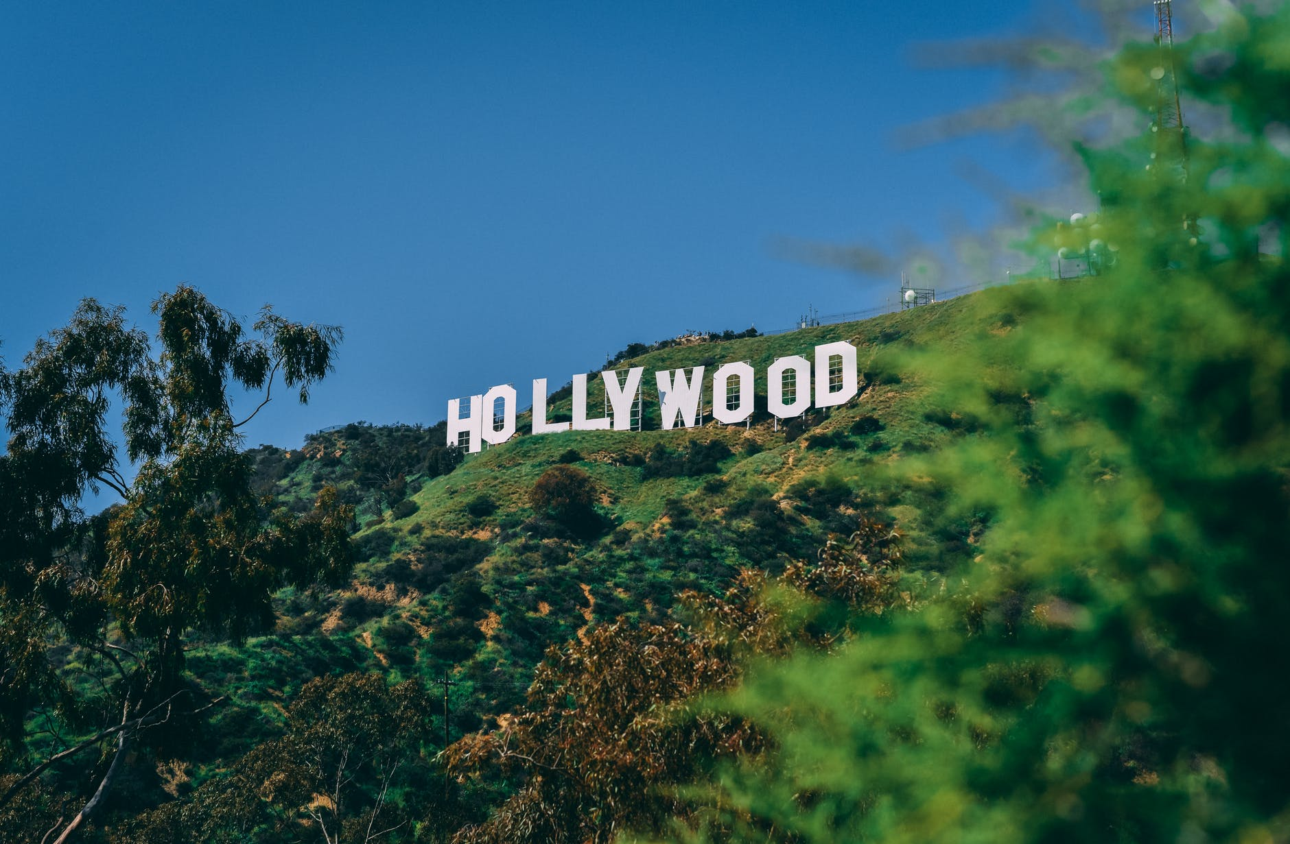 hollywoodien