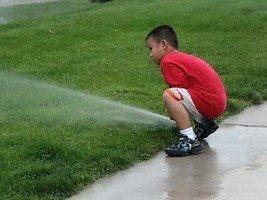 Sprinklers help