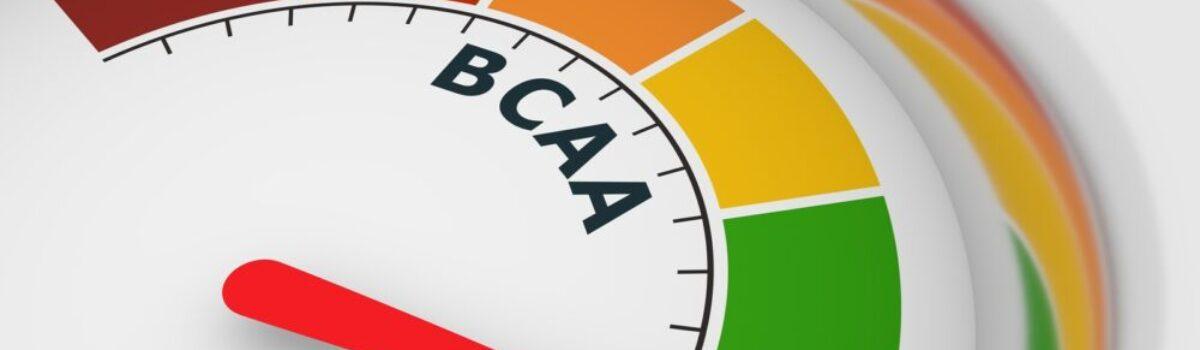 BCAA Benefits of Supplementation