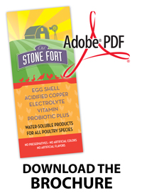 OSF-Brochure-PDF