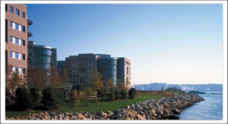 Pfizer - Window Film Account of New England Sun Control - New England Sun Control - Window Film and Window Tinting Solutions for Rhode Island, Massachusetts, Connecticut, Greater Boston, South Eastern MA, South Eastern CT, North Shore, Cape Cod, and the Islands. - 21