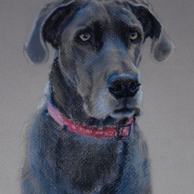 Grey dog painting