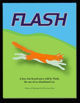 Flash children's book