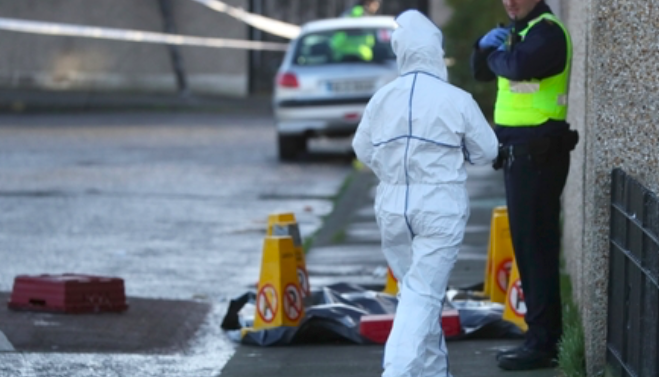 Newcastle businessman and a former school principal shot dead in broad daylight