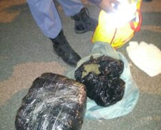 A woman was detained on a charge of dealing in dagga - Eastern Cape