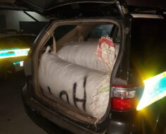 Five suspects arrested and Drugs and ammunition as well as livestock confiscated - Western Cape