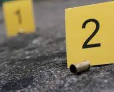 It is alleged that the lifeless body of a 34-year-old woman was found with open wounds on the head - Kwazulu-Natal