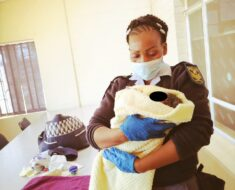 SAPS members have successfully managed to assist a woman to deliver the new born baby girl - Limpopo
