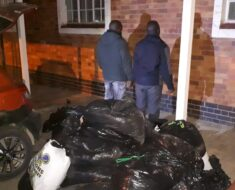 Two suspects were arrested and a vehicle seized for transportation of dagga - Free State