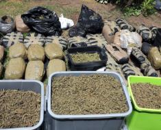 39-year-old man arrested for dealing in dagga - KwaZulu-Natal