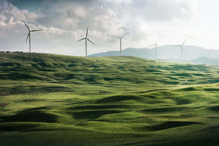 employment transitioning in the new green deal
