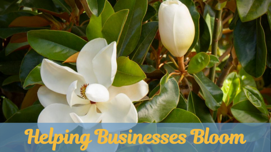 Southern Marketing Team. Tag Line: Helping Businesses Bloom. Marketing Services.