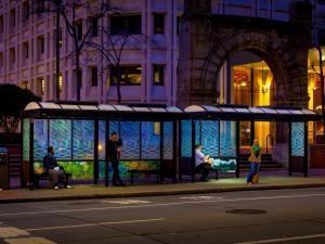 Urban Solar shelter lighting 13