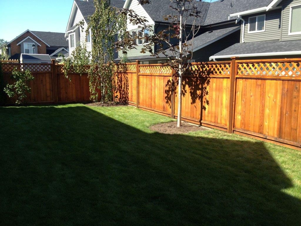 Cedar fence re-stain in Langley, BC
