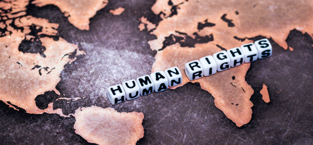 Human Rights Day: Safe and Affordable Imported Medicine and the Internet