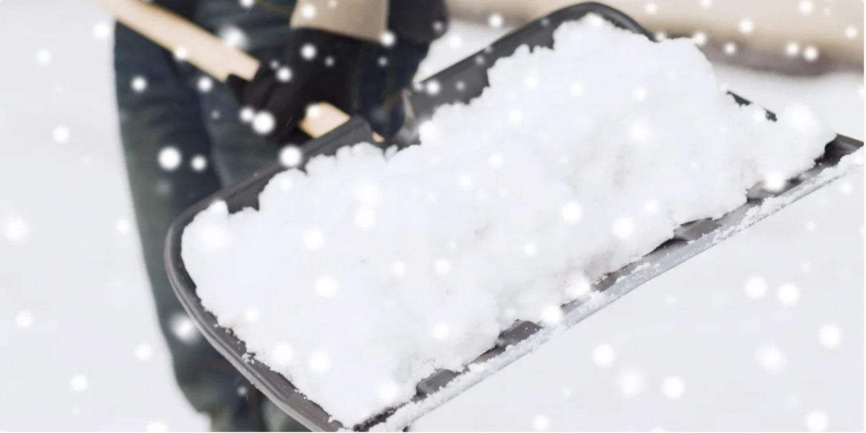 brigade-neige