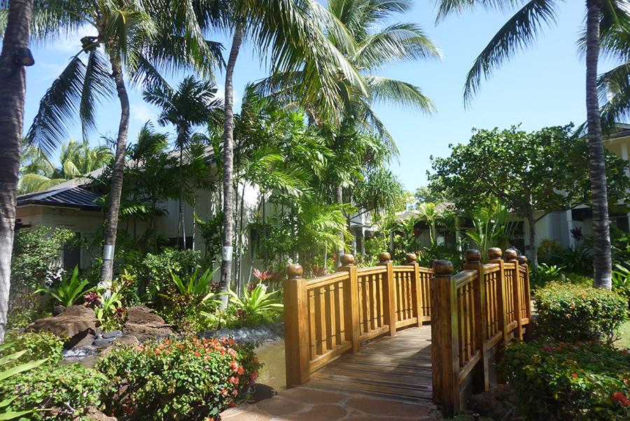 Scenic gardens surrounding the pools and homes.