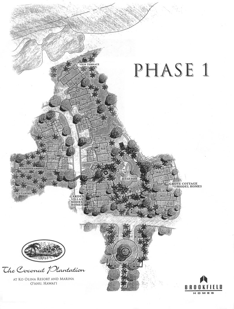 General lot layout of The Coconut Plantation