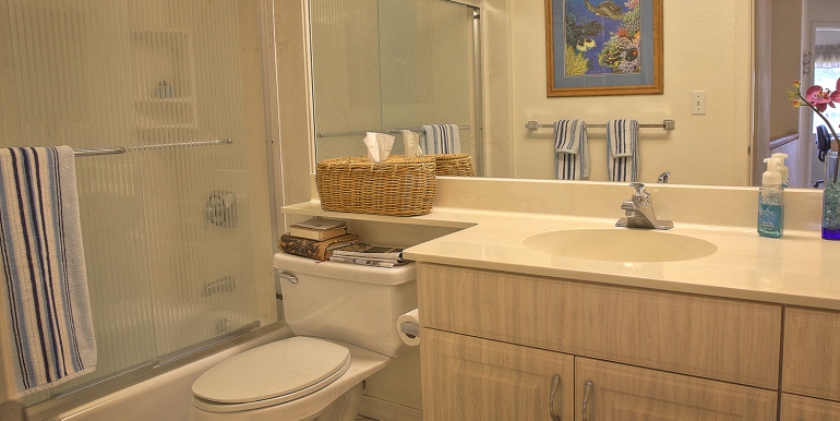 Upstairs guest bath-1
