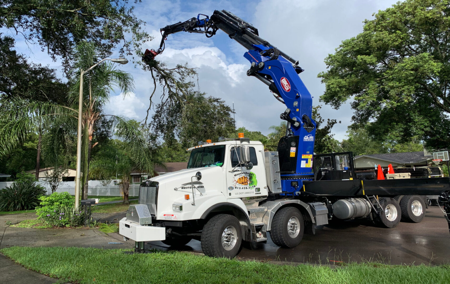 emergency-tree-removal-treetrimming-tampa-bay