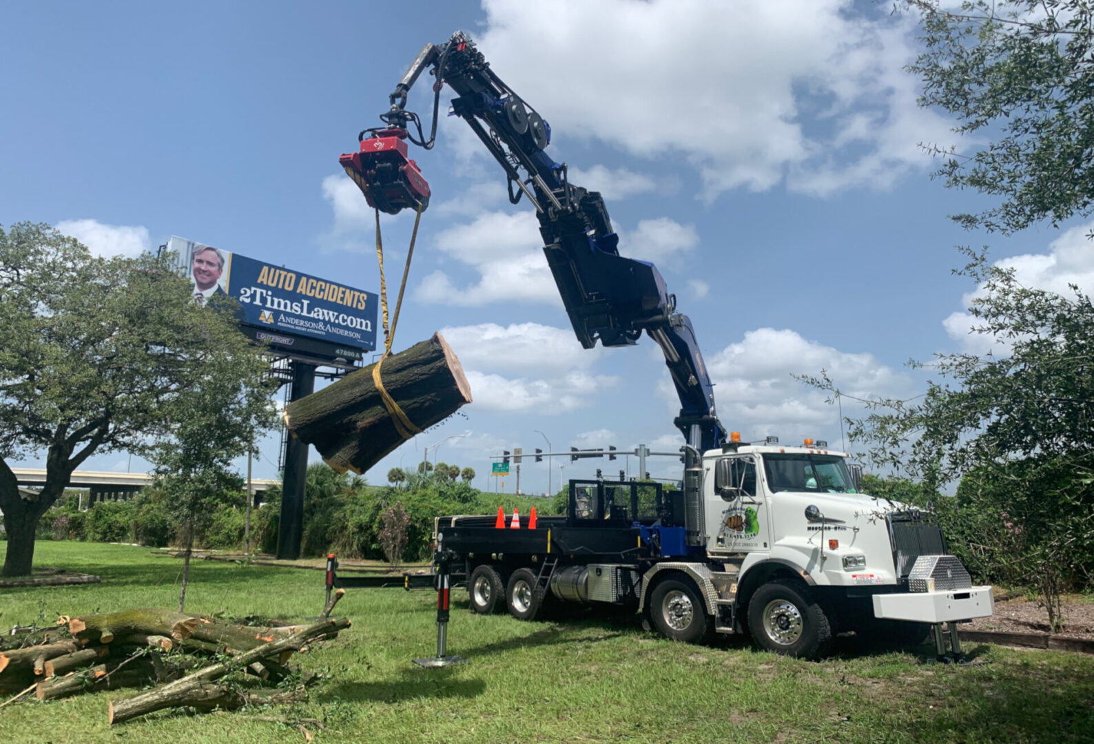 tree-service-tampa-bay-fl