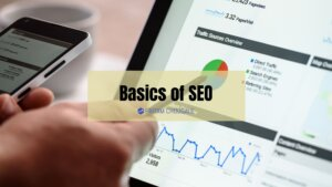 Read more about the article SEO Basics: Guide To Rank Higher In Search Results